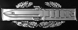 Combat Action Car or Truck Auto Emblem