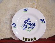 Bluebonnets and Texas Plate