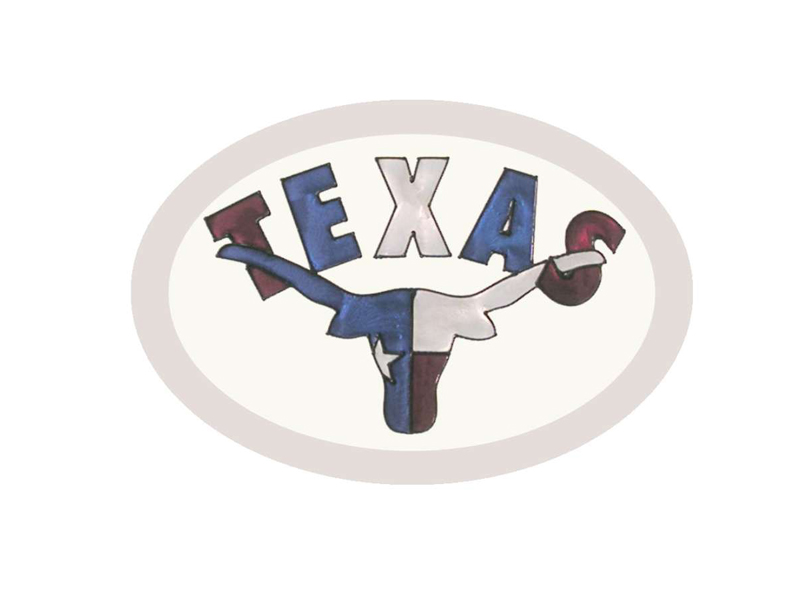 Texas Hand Painted Glass Art - Texas Longhorn Sun Catcher