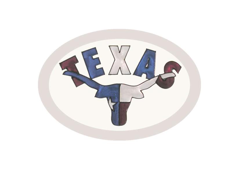 Texas Hand Painted Glass Art - Texas Longhorn Sun Catcher