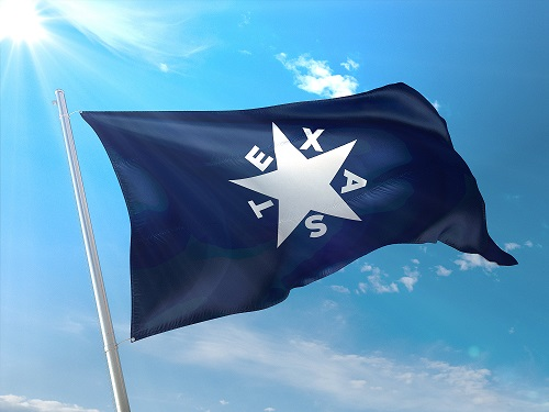 Battle Flag of Texas- Cotton First Republic 1836 - De Zavala