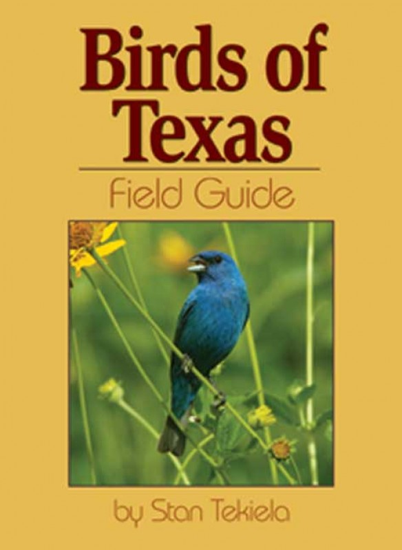 Book - Birds of Texas Field Guide