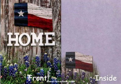 Texas Greeting Cards - Texas Home and Bluebonnets