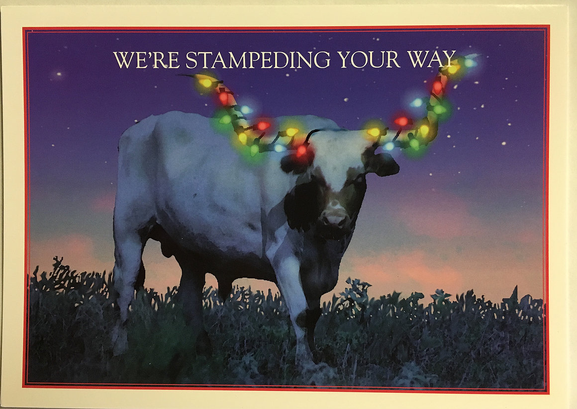 Christmas Cards-Texas Longhorn with Lights