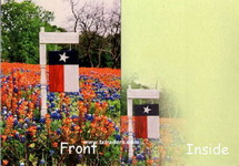 Texas Greeting Cards - Texas Flag Sign and Bluebonnets
