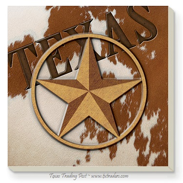 Aquastone Coasters with Texas and Lone Star