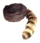 Davy Crockett Coon Skin Tail Cap