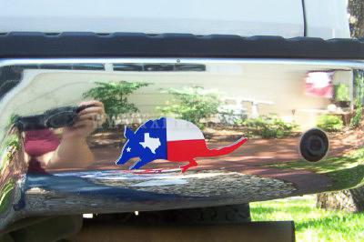 Texas Armadillo Decal