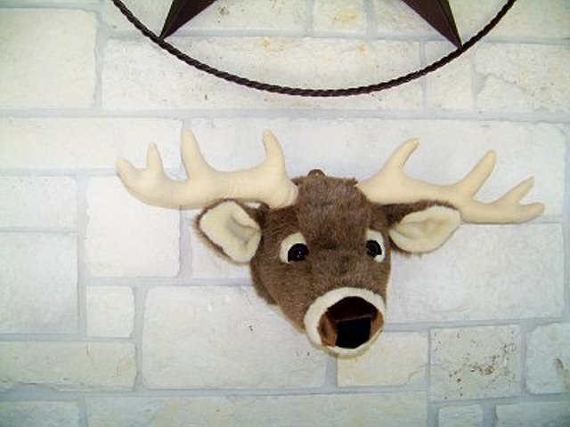 Texas White Tail Deer Mini Head Mount-Not So Life Size