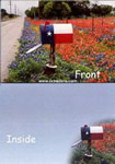 Texas Greeting Cards - Texas Flag Mailbox