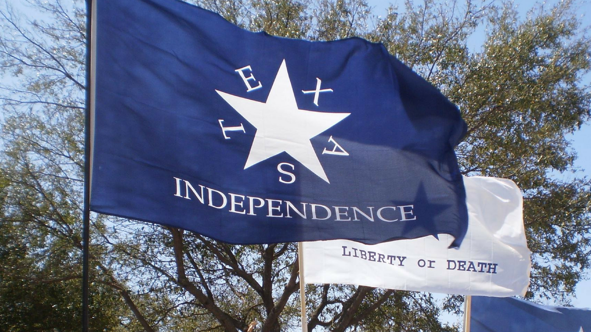 Battle Flag of Texas - Conrad's Independence Battle flag