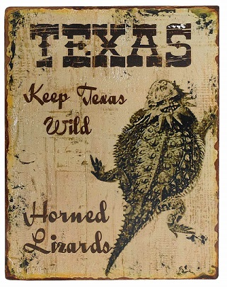 Texas Keep Texas Wild - Horned Toad Wall Decor
