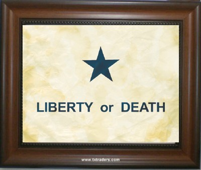 Battle Flag Print in Mahogany Frame - Liberty or Death