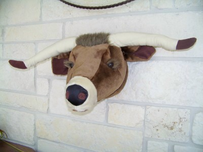Texas Longhorn Head Mount-Not So Life Size