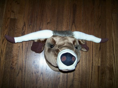 Texas Longhorn Mini Head Mount-Not So Life Size