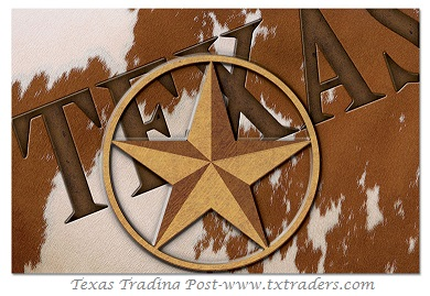 Texas Lone Star Placemats