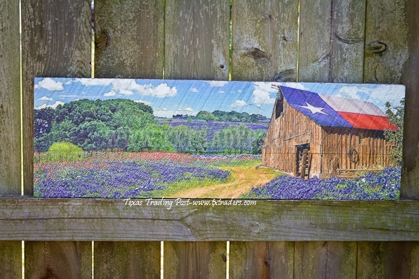 Barnwood Art - Texas Flag Barn and Blue Bonnets