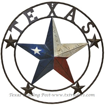 Texas License Plate Lone Star Metal Art with Texas