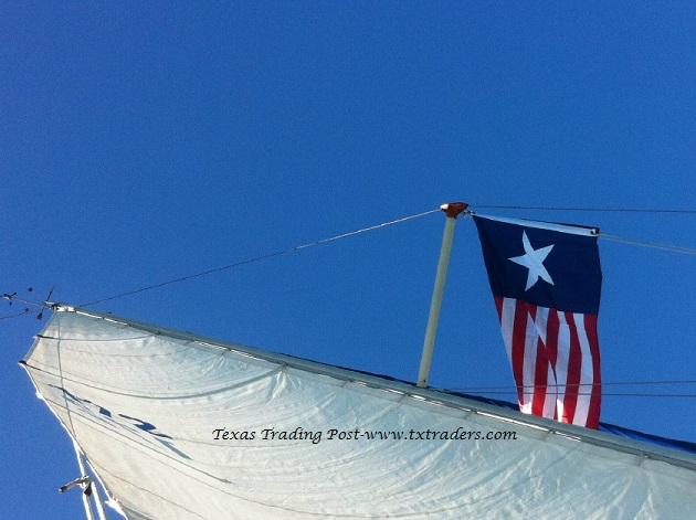 Battle Flag of Texas - Texas Navy